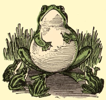 frog-cartoons-5