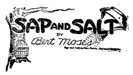 sap and salt pic
