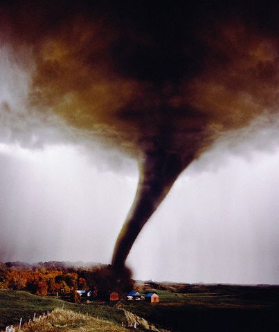 """defination of natural disaster in 500 words Gene definition, the basic physical  a combining form meaning """"that which produces,"""" used in the formation of compound words: endogen  bacteria have between."""