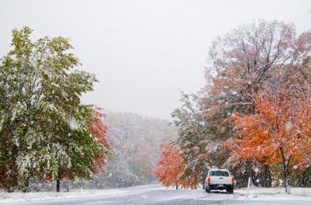 TP Fall Snow SA 1